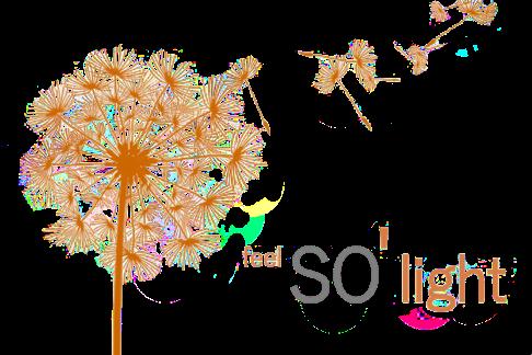 Logo-FSL